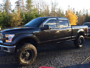 2015 Ford F-150 lifted