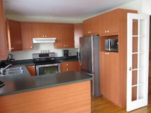 Armoires de cuisine + comptoir + évier + robinet + hotte