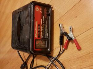 12v Motomaster battery charger