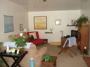 Condo Style 2 Br 2nd floor Flat Downtown Dart. Aug 1