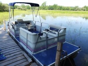 16 foot pontoon boat, 25hp mercury, and trailer