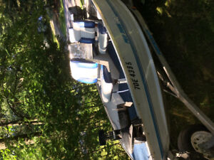 14 foot aluminum fishing boat with 30 HP Evinrude 2 stroke and