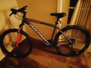 Devinci Jackson mountain bike