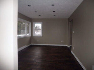 Two bedrooms house near university.