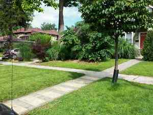 Hardscraping and lawncare London Ontario image 6