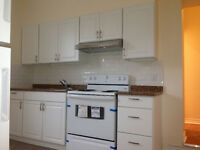 Just Renovated super spacious 4BR apartment downtown core!