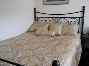 Bed spread for Double bed color gold 75.00 negotioble