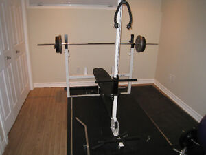 Northern lights bench, bars, weight plates