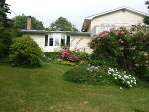 House + 1.4 acre with 2 Garages for sell chessetcook-porter lake