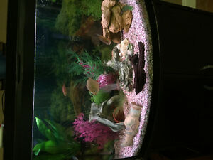 GUC Fish tank and Stand
