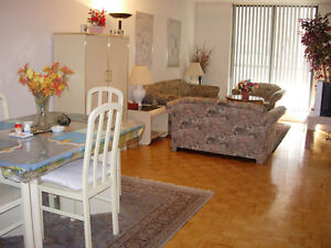 Fully Furnished Condo next to Ryerson & George Brown College!