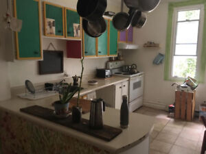 Semi-collective appartement looking for roomate in plateau