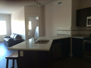FULLY FURNISHED CONDOS-SHORT TERM OR LONG TERM!!!