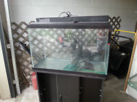 Fish tank and black cabinet
