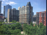 $1100 / 1br - 550ft2 -Beautiful 1 bedroom downtown