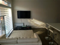 Ville Marie/Old port - Beautiful half-furnished open space unit