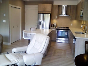 BRAND NEW FURNISHED,UPSCALE LOW RISE CONDO(4 LEVELS)