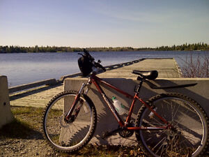 2009 Norco Pinnacle Mountain Bike MOTIVATED TO SELL