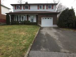 For RENT a detached house 4+1 Beds and 2 Baths in Royal Orchard