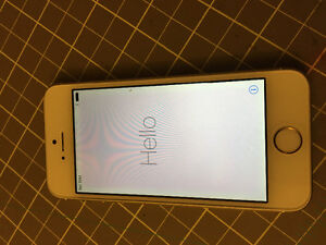 iPhone 5S 16 GB - locked to Rogers