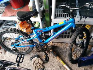 """Nakamura 6 speed 20"""" bike"""