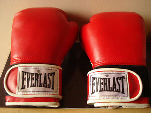 Everlast 80 lb Heavy Bag With Gloves