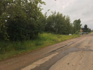 Land in McLaughlin, 25 minutes south west of Lloyd, $ 25,000.00