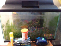 10 gallon fish tank with everything/Aquarium de 10 gallons