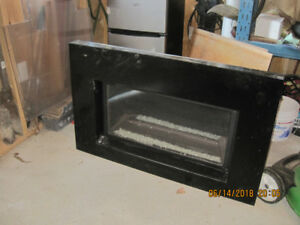 Gas Fireplace Insert $100