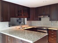 Kitchen cabinets and granit