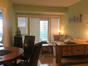 Oliver - Downtown fully furnished room for rent