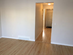 3 BEDROOM TOWNHOUSE - RENOVATED — BY WEST EDMONTON MALL