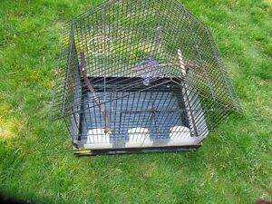 Large Cage for Larger birds such as Cockatiles or Parakeets