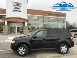 2011 Ford Escape XLT  ACCIDENT FREE LOCAL TRADE! SAT RADIO/BLUET