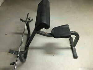 Northern Light Bicep Preacher Curl Bench no power rack dumbbell
