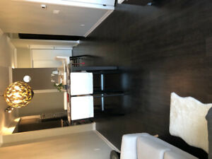 One furnished bedroom in new condo with private bathroom!
