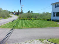 Need Lawn Care? 644-9280