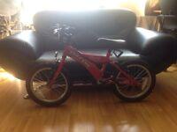 46 Dawes Thunder Bike