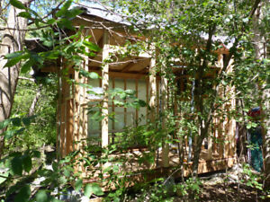 REDUCED: Mini House/ Bunkie/ Camp/ Cabin