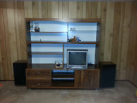 entertainment center, tv, and speakers