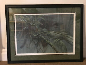 shadow of the rainforest robert bateman (framed)