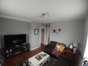 1 BEDROOM PLUS DEN IN LEGAL DUPLEX WITH ONSITE LAUNDRY AND AC