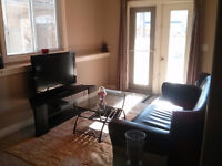 1-Bedroom Furnished Sunlit Walkout Basement Suite For Rent