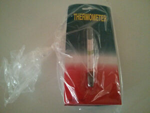 Floating Thermometer for home brewing Cambridge Kitchener Area image 1