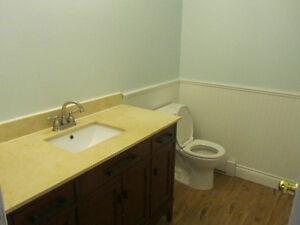 Fully Renovated Duplex Near MUN and All Amenities!! St. John's Newfoundland image 8