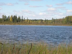 Beautiful wilderness property for sale