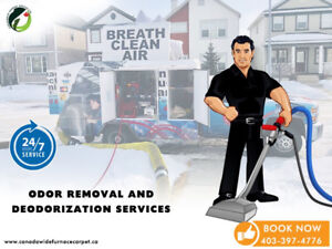 ‼️‼️Furnace Duct Cleaning‼️Deep Carpet Steam Cleaning Same Day‼️
