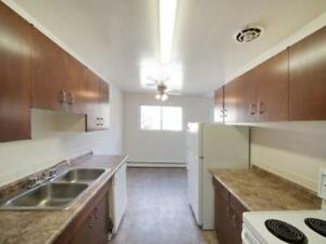 Plaza Apartments - 1 bedroom Apartment for Rent