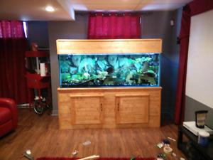 Aquarium Hagen 200 gallons