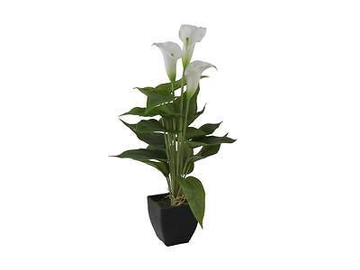 Europalms Calla mini, weiß, 43cm - Kunstpflanze
